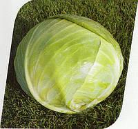 Капуста средне-поздняя Арривист F1 2500 семян