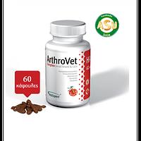 VetExpert ArthroVet HA  (60 таб)- комплекс для лечения суставов малых собак и кошек  (40641)