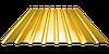 Профнастил ПС 20, полимер (0,30мм толщина)