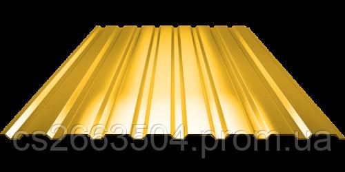 Профнастил ПС 20, полимер (0,45мм толщина)
