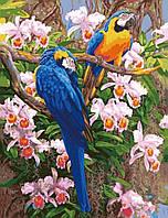 """Акриловий живопис за номерами """"Яскраві папуги"""" полотно 40*50 см без коробки ТМ Ідейка"""
