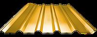 Профнастил ПН 35, полимер (0,75мм толщина), фото 1