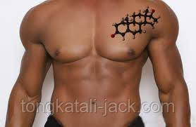 Значение стимуляторов тестостерона