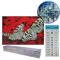 "Картина бриллиант ""Бабочки на герберах"", рулон, 20x30"