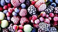 В Украине построят комплекс по шоковой заморозке ягод