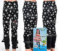 Детские велюровые штанишки на девочку Nailali T731-4 M-R