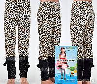 Детские велюровые штанишки на девочку Nailali T731-6 L-R