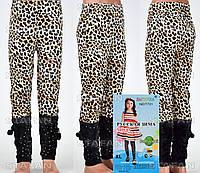 Детские велюровые штанишки на девочку Nailali T731-6 XL-R