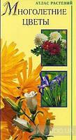 Леннара Хайрова Многолетние цветы