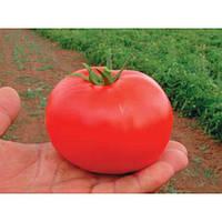 Бобкат F1 семена томата
