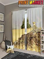 Фотошторы леопард в поле