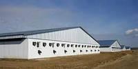 Выполняем все виды ремонтно-строительных работы сельскохозяйственных объектов