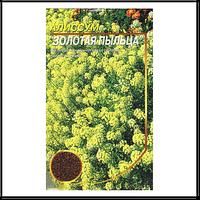 """Семена алиссум евро пакет """"Золотая Пыльца""""  0,3 гр"""