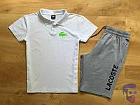 Спортивный костюм комплект шорты+футболка (поло) Lacoste Лакост