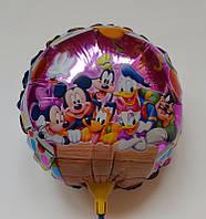 Воздушные шарики фольгированные на палочке КРУГ