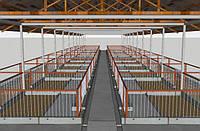 Строительство свинарников четырехрядная система с центральным проездом
