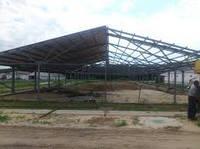 Строительство хрячников, помещения для содержания хряков