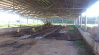 Реконструкция, ремонт хрячников, помещения для содержания хряков