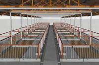 Реконструкция, ремонт помещений для  Цеха выращивания ремсвинок,  ремонтных свинок  ремонтного молодняка
