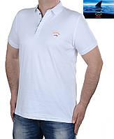 Футболка мужская поло Paul Shark-003,большого размера белая