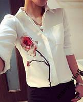 Блуза Роза