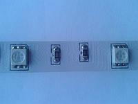 Светодиодная лента MagicLed (чип пр-ва Тайвань) RGB без сил (30 шт/м), фото 1