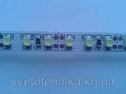 Лента MagicLed (чип пр-ва Тайвань) стандартной яркости без сил 2-я плотность(120шт/м) белая холодная