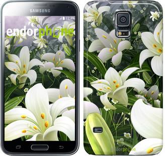 "Чехол на Samsung Galaxy S5 Duos SM G900FD Белые лилии ""2686c-62"""