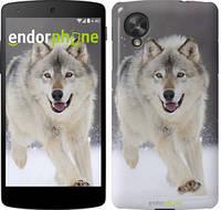 "Чехол на LG Nexus 5 Бегущий волк ""826c-57"""