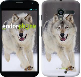 """Чехол на Motorola Moto X Бегущий волк """"826u-358"""""""