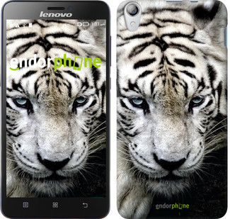 "Чехол на Lenovo P780 Грустный белый тигр ""106u-305"""