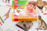 """Набор детских карточек """"Дикие животные"""" 1 Вересня 951906"""