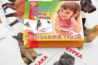 """Набор детских карточек """"Домашние животные"""" укр. 1 Вересня 951908"""