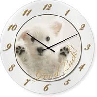 Часы настенные из стекла - щенок - good Luck (немецкий механизм)