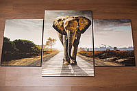 Слон. 130х70 см. Модульная картина.