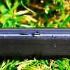 Капельная лента щелевая Blue Line 0,18 (2,4 л/ч) 20 см бухта 500 метров, фото 2