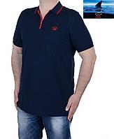 Футболка мужская Paul Shark-240,цвет-темно-синий