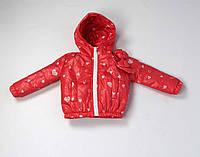 Куртка весна осень беби  код 106 размер 86-104 (1-4 лет) цвет теракот