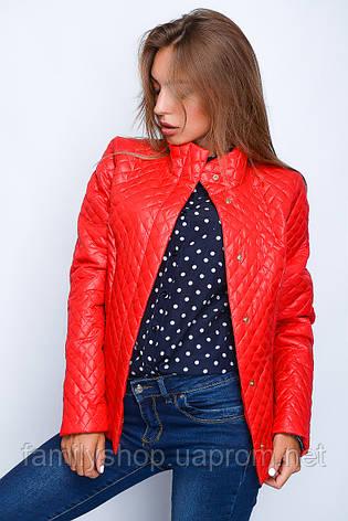 Короткая женская весенняя куртка красного цвета , фото 2