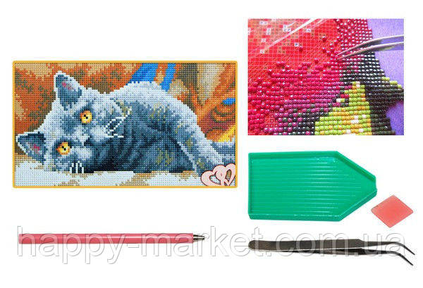 Мозаика алмазная 5D Британский кот 20*33 см.
