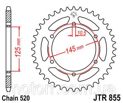 Задняя звезда JT JTR855.47