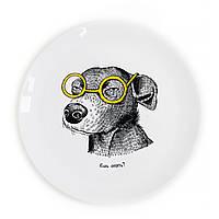 Тарелка Собака-подозревака