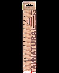 """Олівці графітні """"MARCO"""" Natural (12 шт., НВ) 6000-12CB"""
