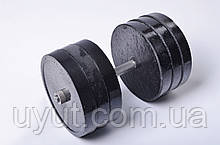 Гантели Plenergy разборные по 32 кг (пара)