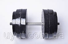 Гантели Plenergy разборные по 27 кг (пара)