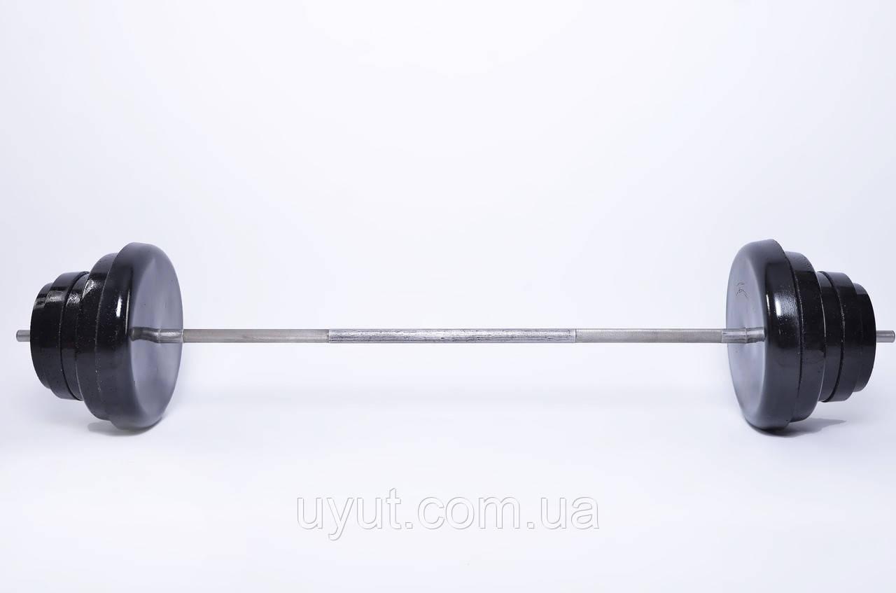 Штанга Plenergy разборная 77 кг