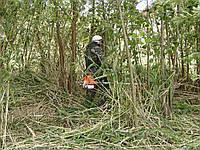 Стрижка травы Киев Скашивание травы, фото 1