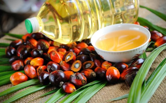 В Украину массово импортируют пальмовое масло