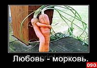 Магниты на холодильник, Юмор 090