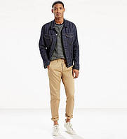 Брюки мужские Levis Tapered Chinos  - Harvest Gold
